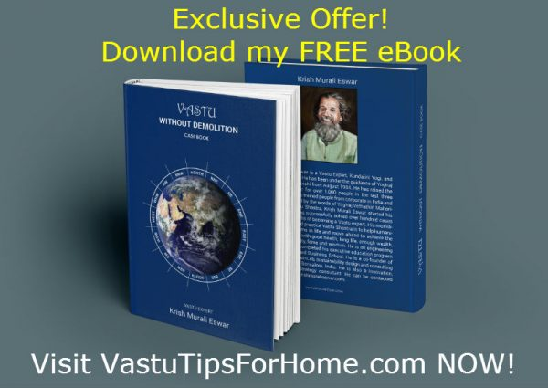 Vastu Without Demolition Book